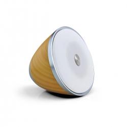 Swisstone BX 700 Bluetooth-Lautsprecher